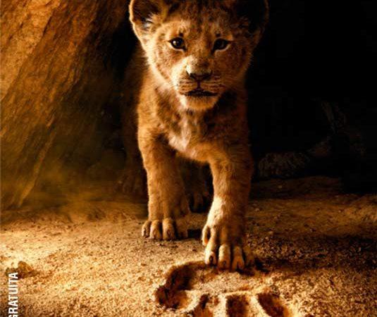 Ciclo de cine infantil en el Centro Comunitario NIDO este jueves se proyecta «El rey león»