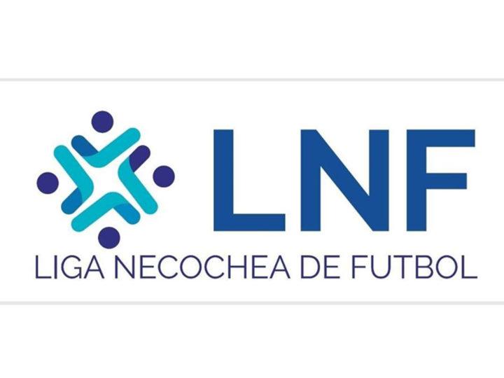 De haber torneo de la Liga Necochea de Fútbol arrancaría recién en septiembre